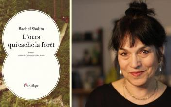 Rachel Shalita : L'ours qui cache la forêt